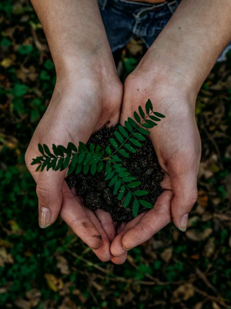 Notre démarche environnement